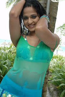 03anushka hot pictures29122008