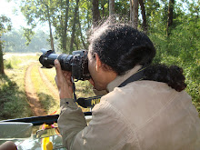 Our Wildlife Photography Expert