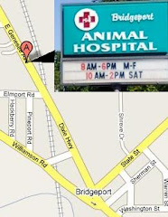 Bridgeport Animal Hospital