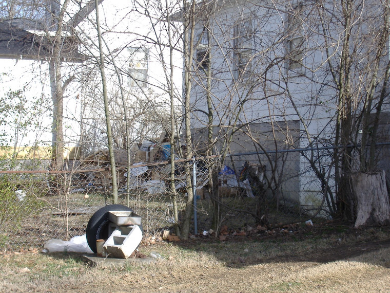 Trash pile in back yard reported to Codes in early February