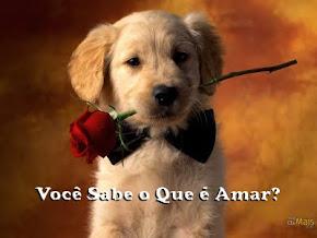 AMOR x Paixão:
