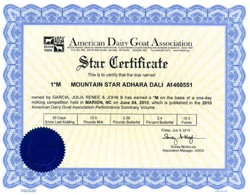Certificate Templates  SmartDraw  Create Flowcharts
