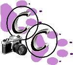 Camera Critters - Saturday