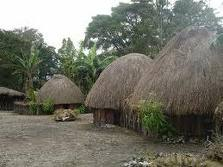 Rumah Suku Asmat