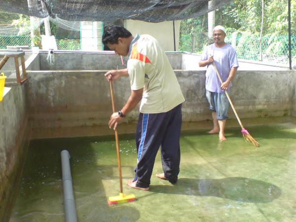 kolam penternakan
