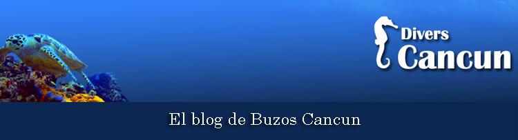 EL blog de Buzos Cancun