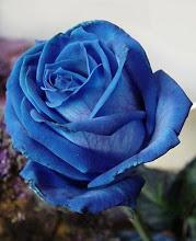 La Rosa Azul... es la amistad... Tómala.