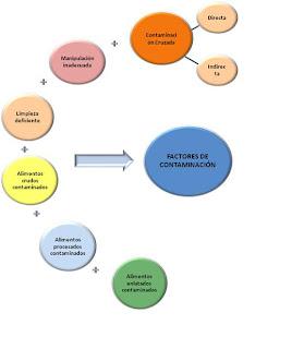 Quesiquesos ii contaminaci n y principales causas de la contaminaci n de los alimentos - Fuentes de contaminacion de los alimentos ...