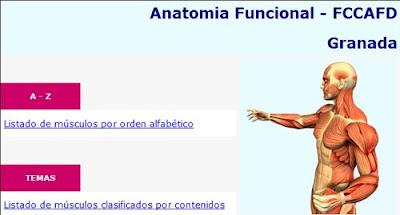 Programa de anatomía funcional músculo esquelético de la Universidad de Granada