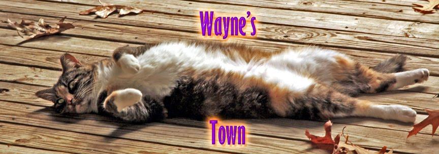 Wayne's Town