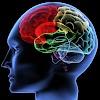 Teori Belajar Kognitif