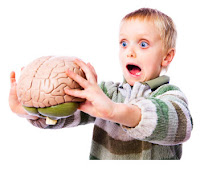 http://4.bp.blogspot.com/_3Z8feJhp8Xo/TK8ow-m0FXI/AAAAAAAAAak/1pZ_tJIG2qw/s1600/child-brain.jpg