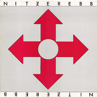 Nitzer Ebb - Isn't It Funny How Your Body Works