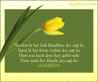Eid Mubarak Tulip Buds Cards