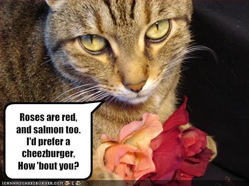 Happy Valentine Day Bucc