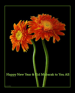 happy eid wishes with flowers