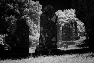Download Spooky Graveyard Halloween Wallpaper
