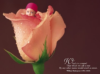 Anne Geddes Valentine Collection