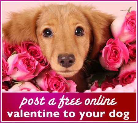 The Best of Happy Valentines Day Wallpapers June 2010 – Valentine Day Cards Online