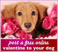 Online Valentines Day Cards