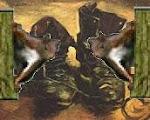 Artwork 66: Ahorn III