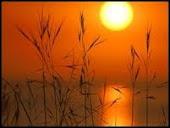 sunset pun cantik kan?!
