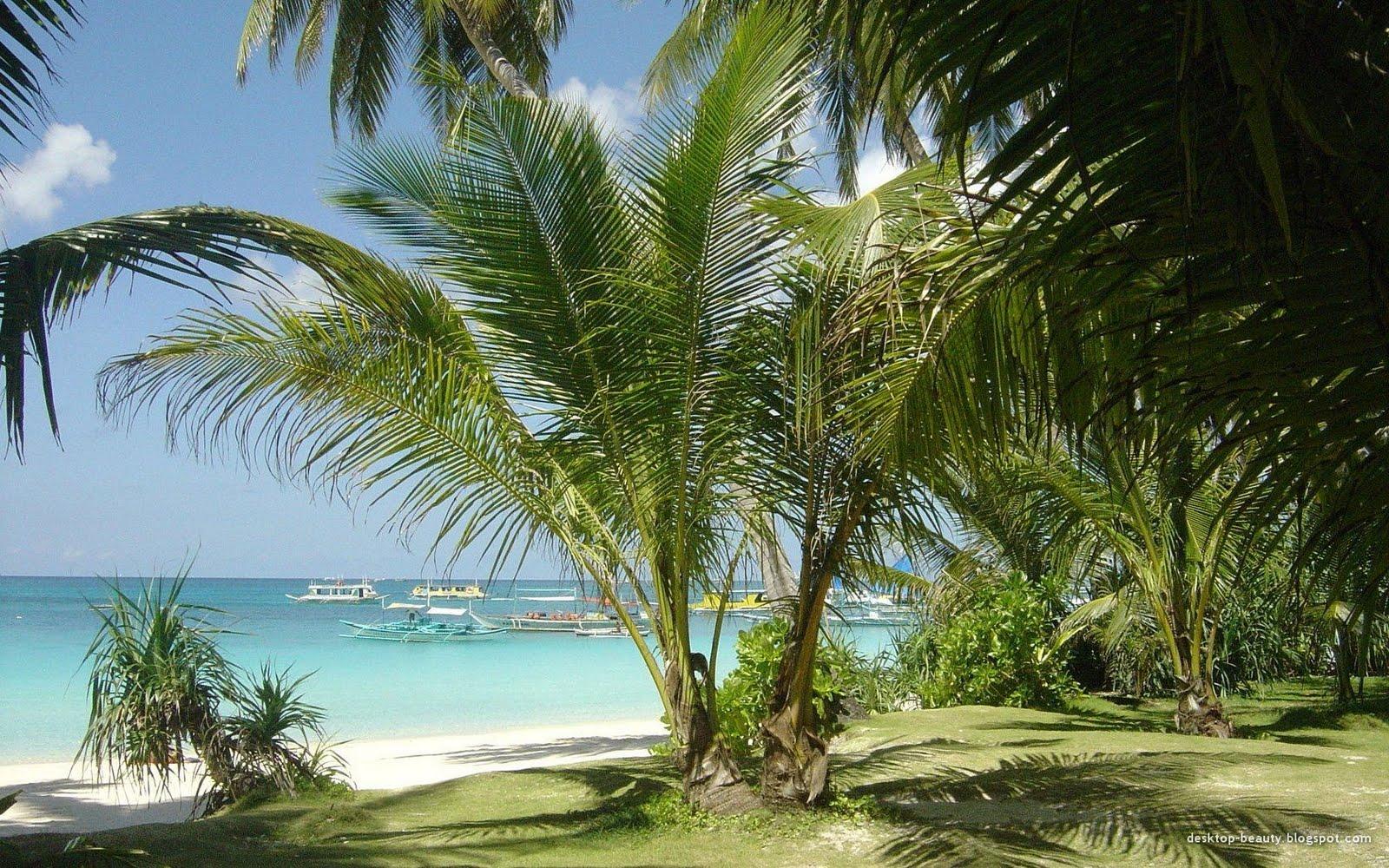 http://4.bp.blogspot.com/_3f95iVVUx6I/StH4teN7_rI/AAAAAAAANlw/Hvy1MmZD10g/s1600/boracay_white_beach2.jpg