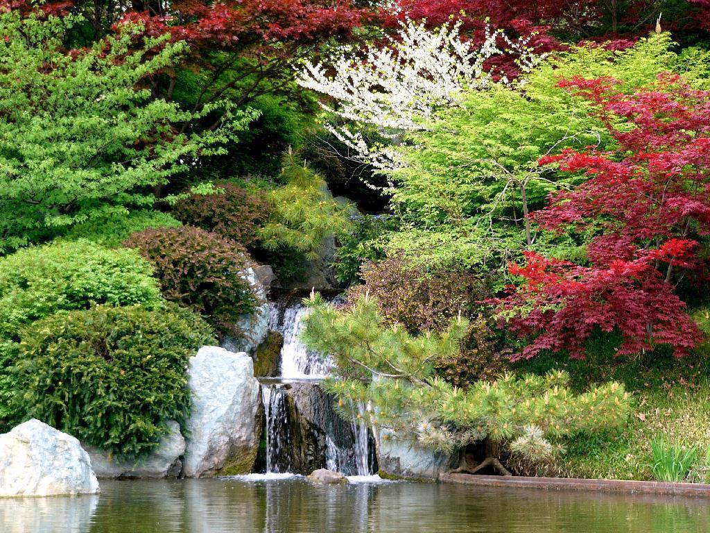 http://4.bp.blogspot.com/_3fBaEIRI-aU/S8i7lazAQsI/AAAAAAAAAJM/jyjbsFiRItU/s1600/tsu1.jpg