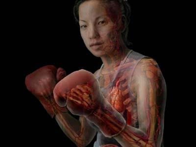 anatomia humana y sus cuidados