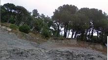 WIKI de l'entorn natural de l'escola Vedruna Tona