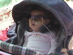 Algarrobo Enero 2008