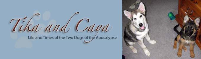 Tika and Caya