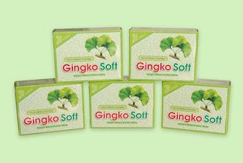 Gingko Soft /30 VIÊN