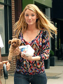 Blake Livelys  on What Would A Dog Do  What Does Gossip Girl Blake Lively And Cameron