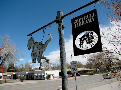 Grey bull, Wyoming Public Library