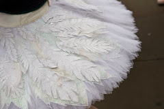 The story of a Swan Lake tutu, photo :  Robert Griffin