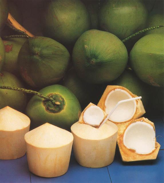 File Kokosnuss Coconut