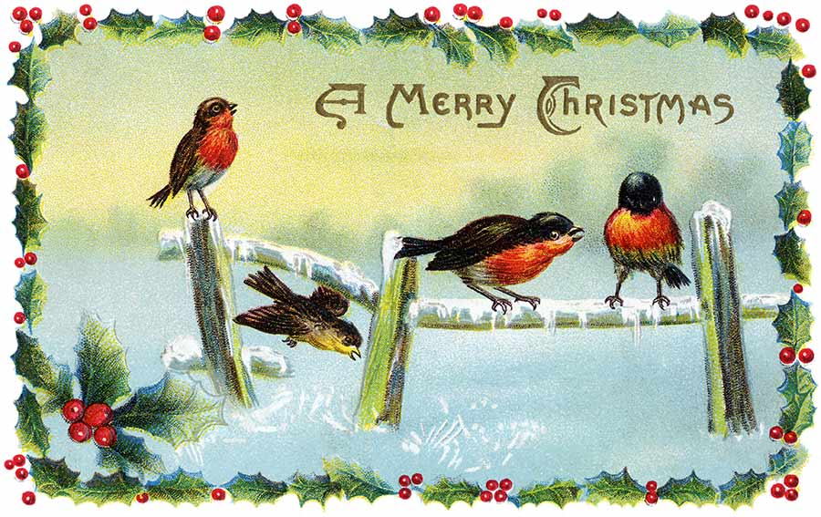 Joys of christmas vintage christmas cards a 1913 illustration of winter song birds m4hsunfo