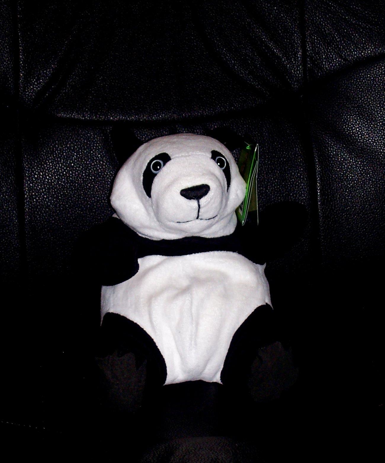 [Panda+front.jpg]