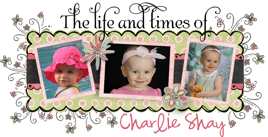The Life and Times of Charlie Shay