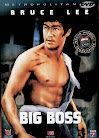 Sinopsis The Big Boss Tang Shan Da Xiong