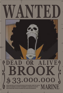 bounty brook one piece