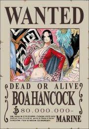bounty_boa_hancock_schichibukai_one piece