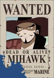 bounty dracul mihawk schichibukai one piece