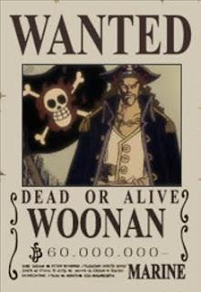 bounty woonan one piece
