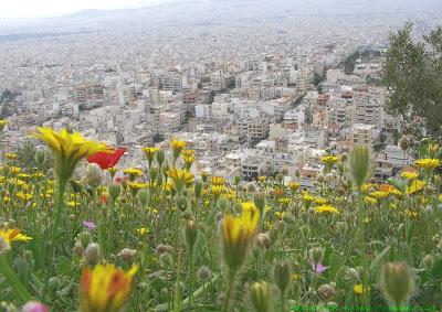 Ανοιξη στις παρυφές της Αθήνας