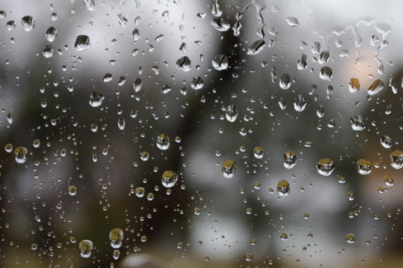 rainy days and mondays pdf