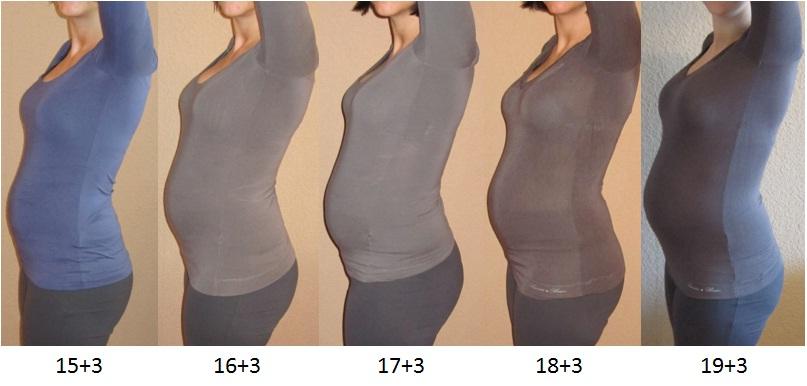 gewichtszunahme schwangerschaft zusammensetzung