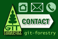 GIT Forestry Consulting - Consultoría y Servicios de Ingeniería Agroforestal - Lugo, Galicia, España / Semilla forestal. Planta forestal. Planta ornamental. Plantaciones forestales. Inventariación y Ordenación de Montes. Gestión selvícola integral. Maderas. Eucalipto. / Improved Seed. Seedlings. Ornamental plants. Forestry plantations. Forest management plans. Silvicultural management. Timber. Eucalyptus