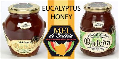 Mieles Outeda, Organic Eucalyptus Honey Made in Galicia / Miel ecológico de eucalipto de Galicia / Mel ecolóxico de eucalipto de Galicia /Mel de Galicia: calidade en delicatessen / Miel de Galicia: calidad en delicatessen / GIT Forestry Consulting, Consultoría y Servicios de Ingeniería Agroforestal